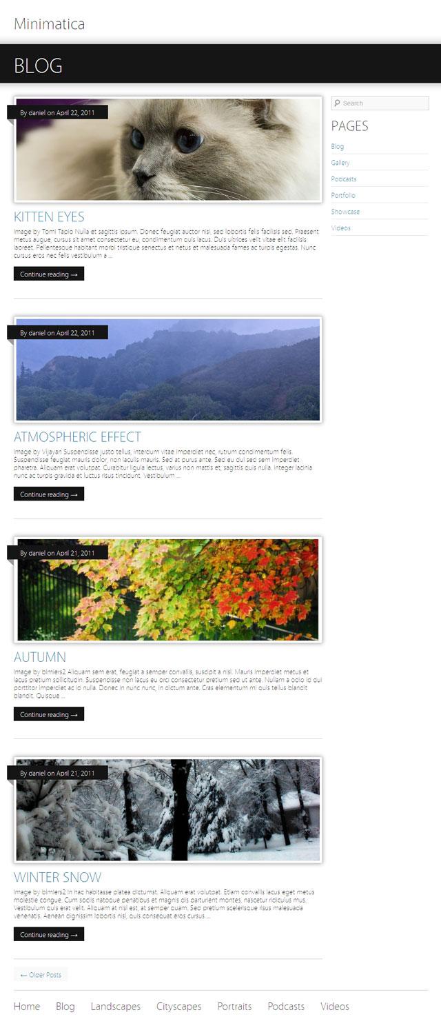 Minimatica Blog View