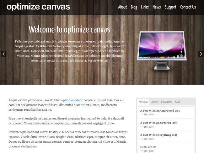 Optimize Canvas Child Theme